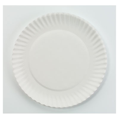 AJM Packaging Corporation White Paper Plates, 6""