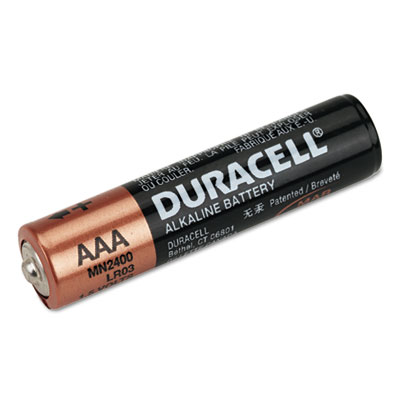 Duracell Coppertop Alkaline Batteries, Reclosable, AAA,