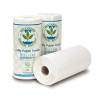 Hillyard Towel Kitchen Roll Gsc 2 Ply 90RL 30C